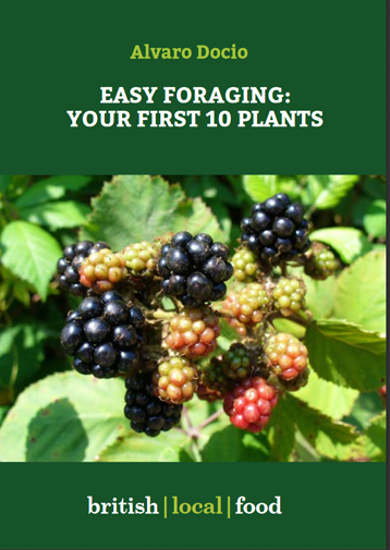 Easy foraging - Free Ebook