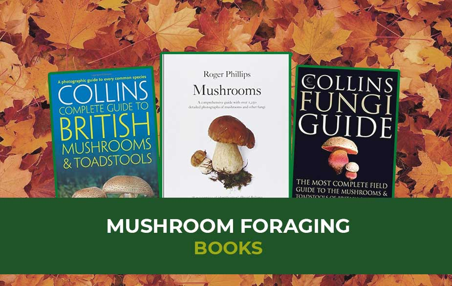 Resources: Mushroom foraging books